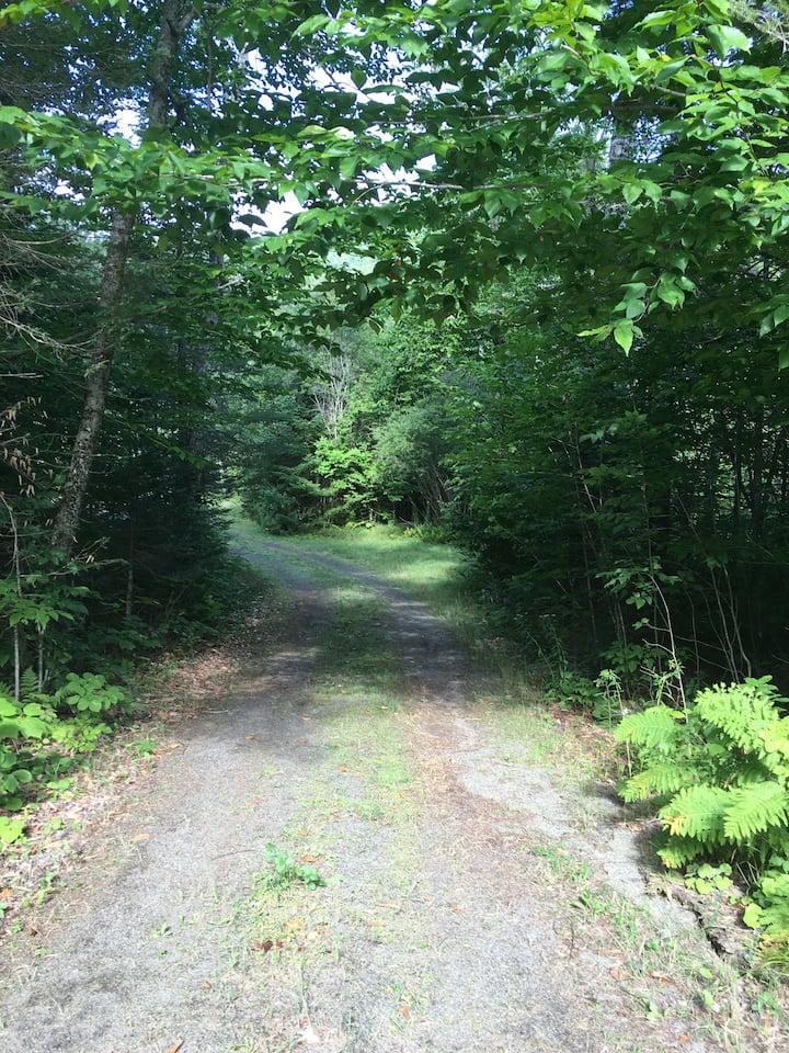 Whispering Pines  Retreat
