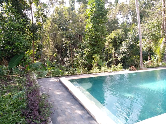 Green Jungle Villa 4BR/ with Swimming Pool