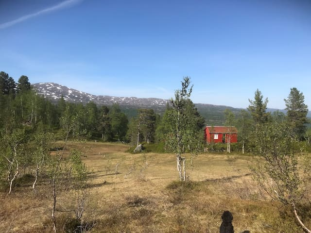Gravurfjellet, hytte med utsikt