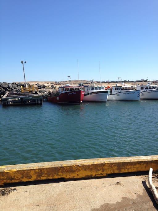 fishing port at 2 minute walk