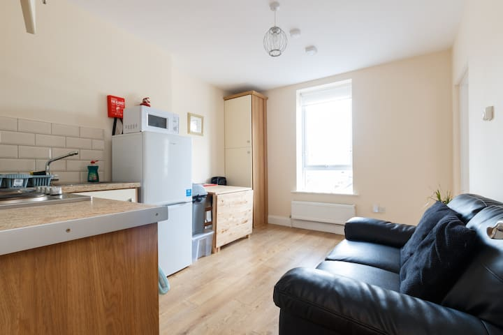 Modern One Bedroom Apartment - Dublin - Huoneisto