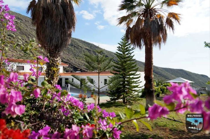 Unique Villa with Palm Garden, Pool & Office Space - Santiago del Teide - Villa