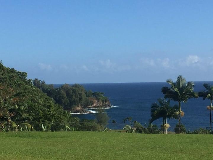 Coconut Palms Estate