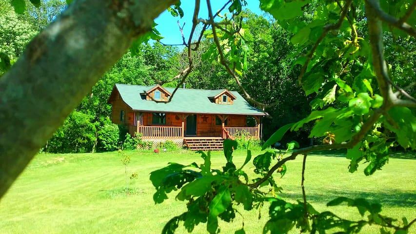 Chestnut Hill Cabin w/ Hot Tub Jacuzzi