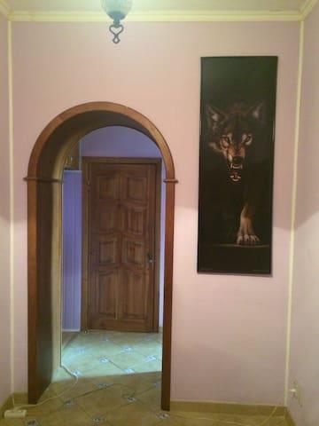 Уютная 1 комнатная квартира. Центр - Ulyanovsk - Apartment