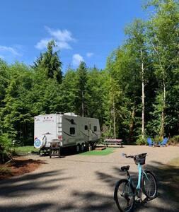 Little Fern- RV Camp Trailer