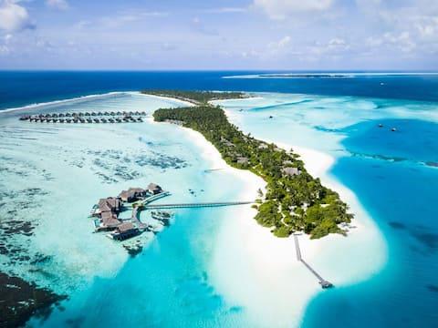 Niyama Private Islands  Beach villas