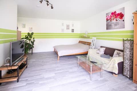 Un apartament în inima pădurii vieneze