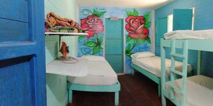 Baño privado, aire acondicionado (Máx. 4 personas)