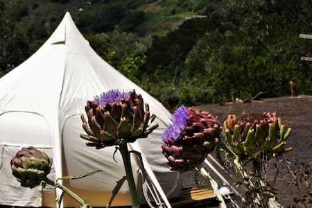 Unique Yurt, Spectacular view, Nature paradise