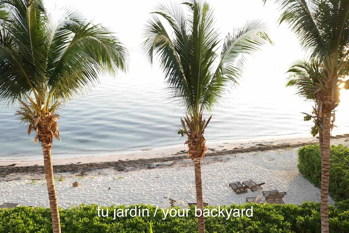 Paraíso a pie de Mar / Ocean Paradise