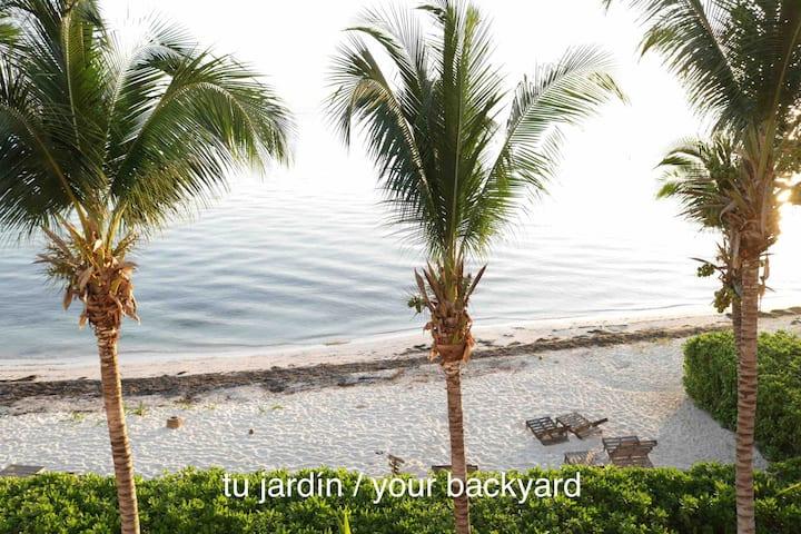 *Paraíso a pie de Mar / Ocean Paradise*