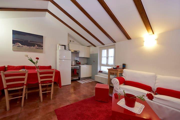 Studio G. Allevi - Antica Dimora - Borgo Ticino - Lägenhet