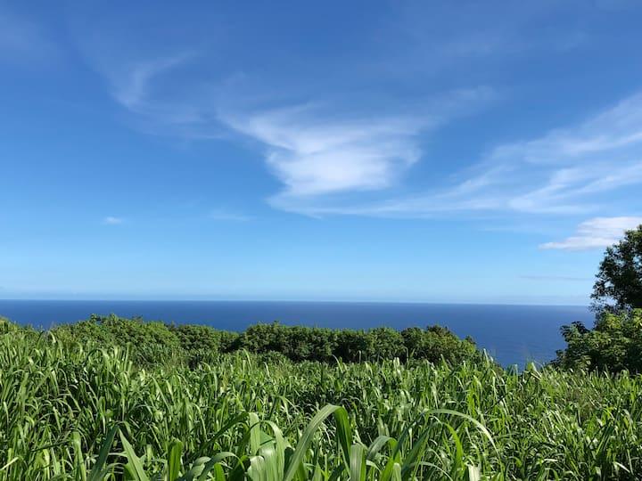 Farm Cottage Ocean Views! Live Hawaii Style!!