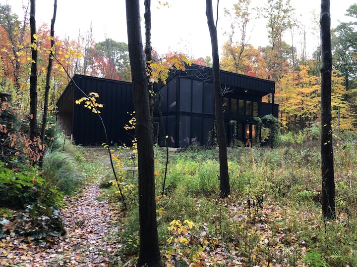 Modern Cabin in the Woods 2