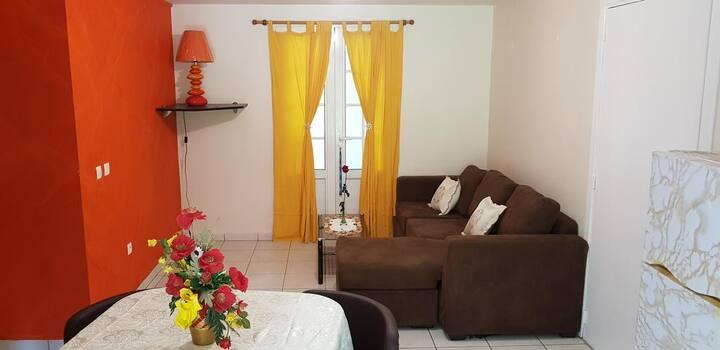 Charmant T3 tout confort - villa TIFRED