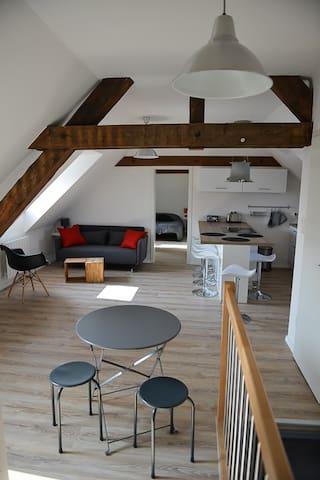 Appartement de caractère à Colmar - Colmar - Appartement