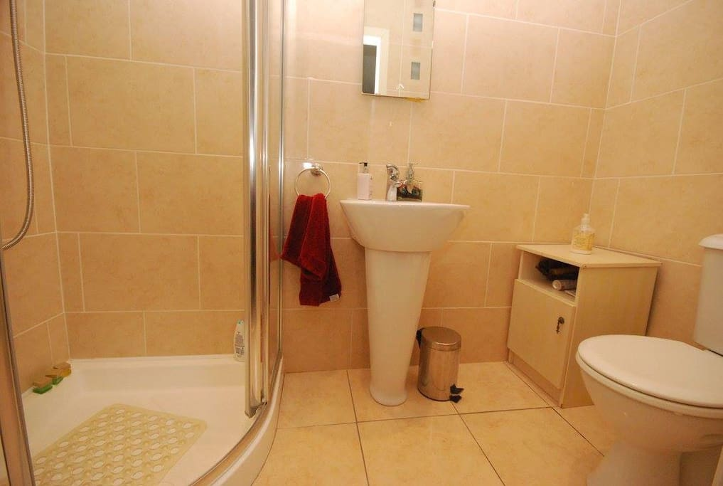 En Suite (Power Shower)