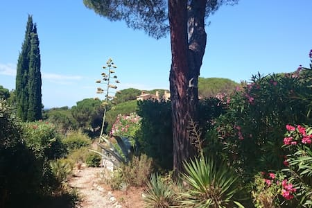 Garden level  5 minutes walk from the beach !