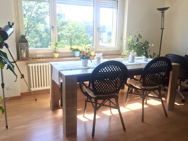 Beautiful 70m2 apartment in front of the river - Zürich - Appartement