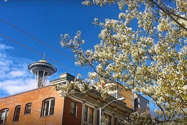 Luxury Downtown living - next to Pike Place Market