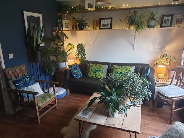 Plants, Art and Design! Unique House in Norwich