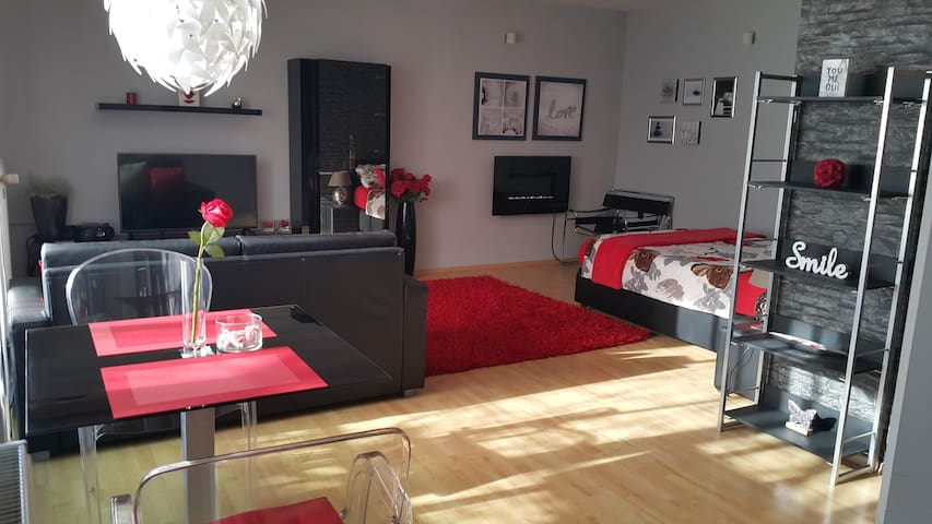 Apartment Dunajska in  Ljubljana