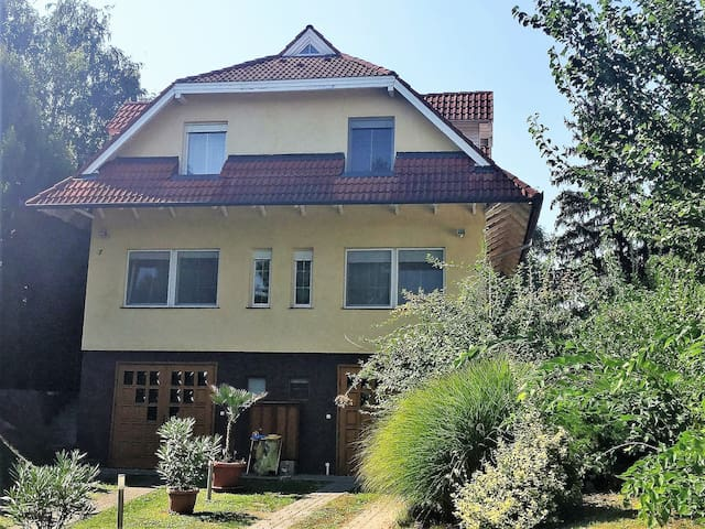 House for 8+2 pers with WLAN in Siófok R66453