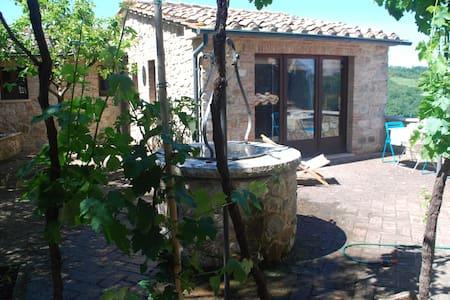 Studio apartment in Val d'Orcia - Castiglione d'Orcia - House