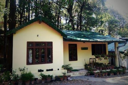 Hutton Cottage Annex, Nainital - Nainital