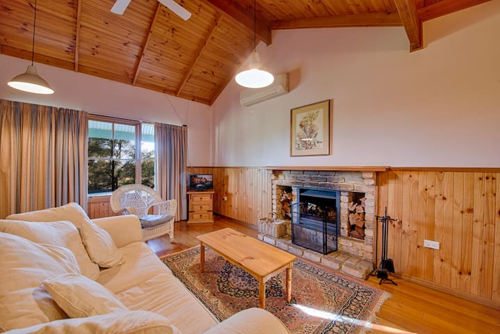 The large living area with an open fire.
