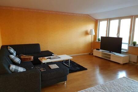 Lovely room near Lund University  - Lund - 公寓