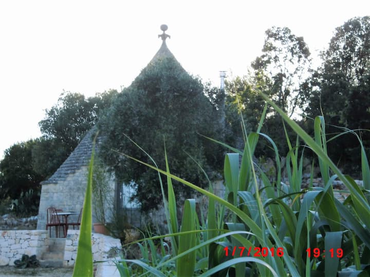 Love birds Trullo