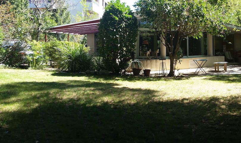 super quiet garden !