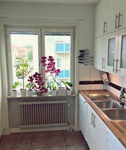 A bright apartment by the park - Malmö - Apartment