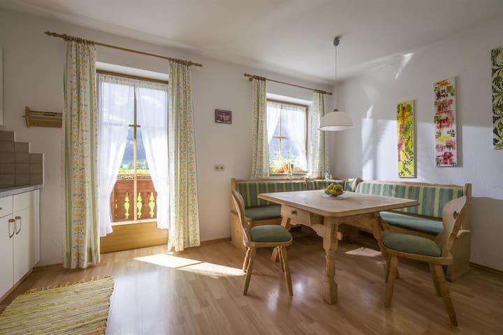 Appartement in Ramsau im Zillertal - Ramsau im Zillertal - Apartment
