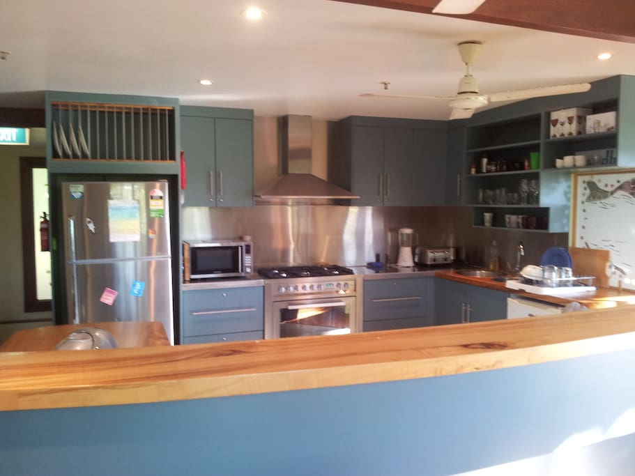 Large commercial sized kitchen