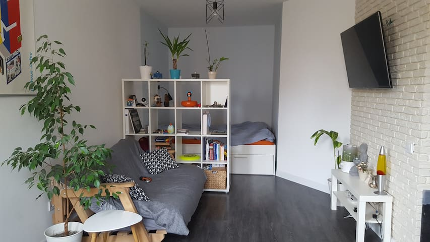 Cozy scandinavian studio near airoport Zhulyany