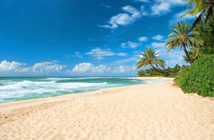 Spectacular OCEANFRONT Only 10 Steps From Beach