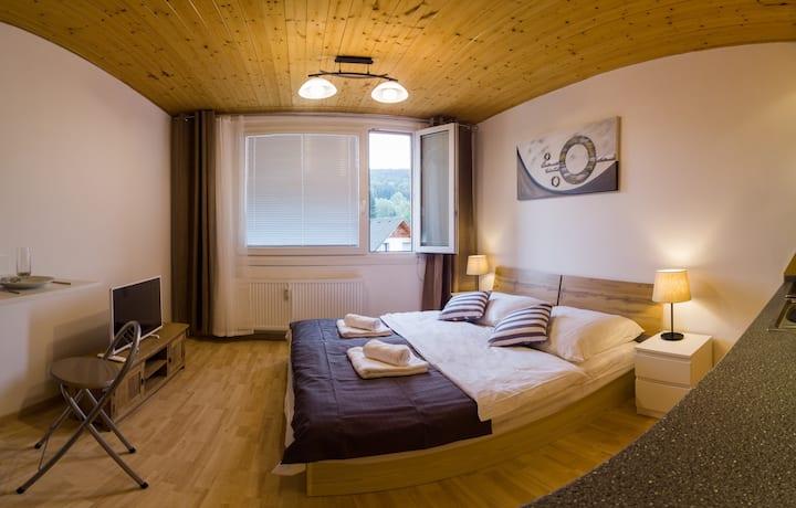 Cozy Apartment for 2 w/ Breathtaking Mountain View