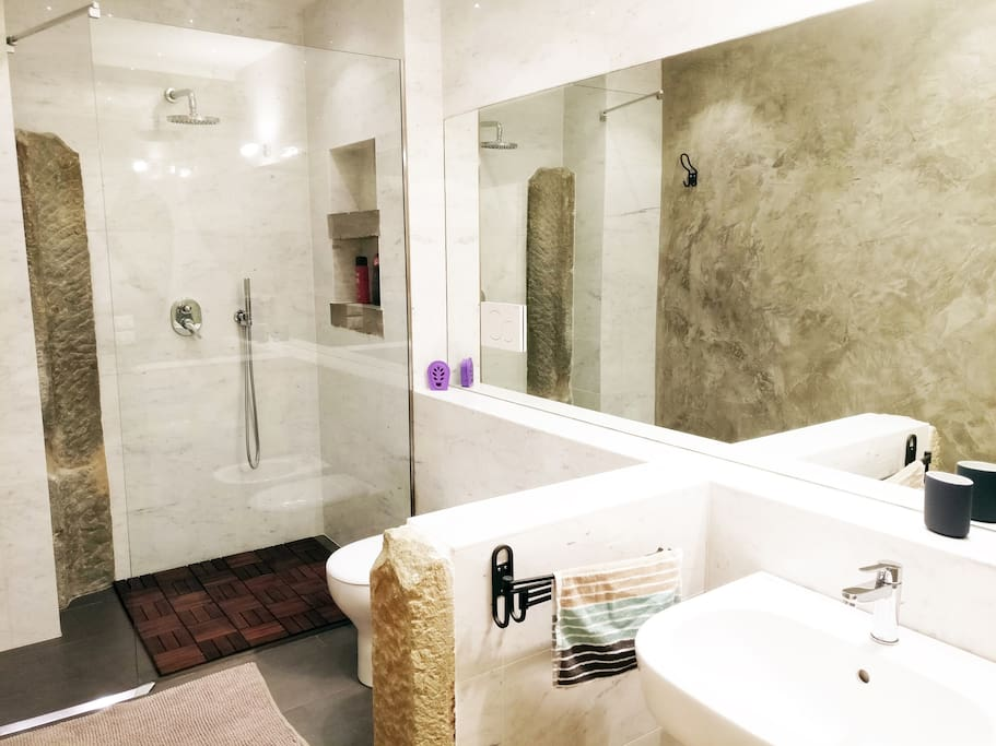 Luxurious shower with all the amenities needed