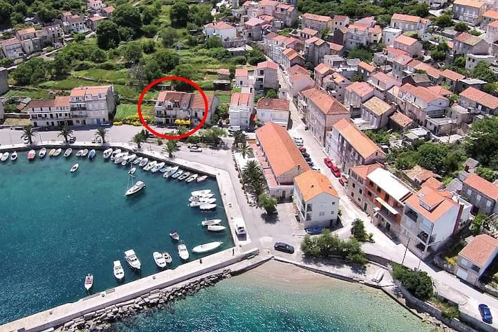 Studio flat with terrace and sea view Račišće, Korčula (AS-161-a) - Račišće