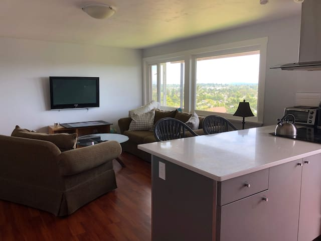 1 Private Bedroom. Furnished/Utilities Included
