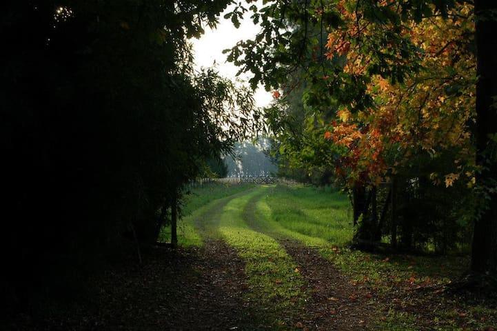 Casa de campo, ambiente rural en actividad - Buenos Aires - Chalupa