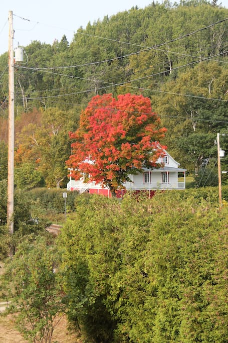 View of traditional Quebec home with Autumn colors!