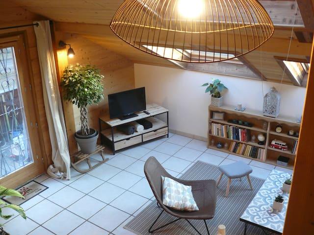 La Maison du Lac - Plage de St Disdille - 6 pers - Thonon-les-Bains - Appartement