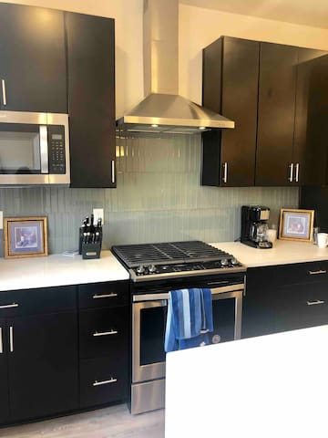 Brand new townhouse in downtown Indianapolis!