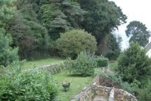 Jardins sur plusieurs niveaux