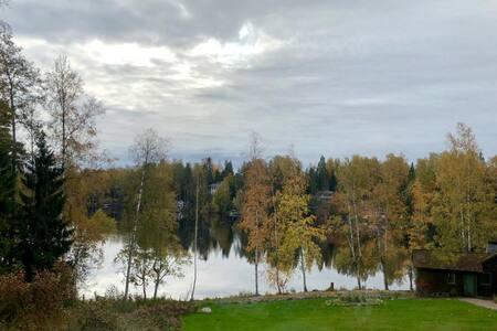 Shore of clean water lake