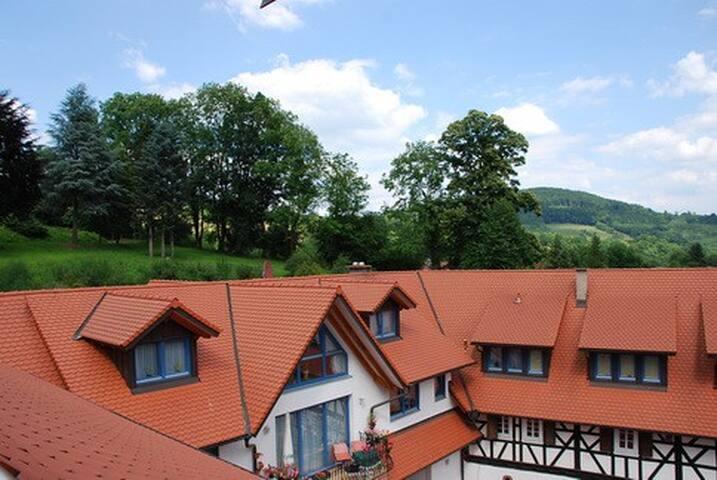 Glattbacher Hof - Ferienwohnungen im Odenwald App8 - Lindenfels - Vacation home
